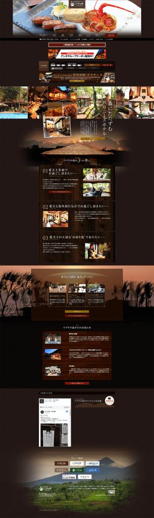 website (19)