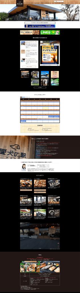 website (22)